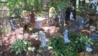 sounds scape garden