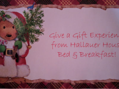 Give a Gift Experience